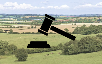 Update: Land and Property Auctions are back!